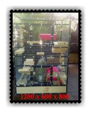 custom cages for chinchillas