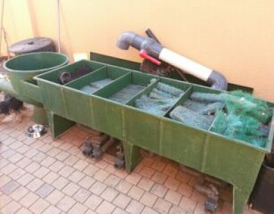 Koi Dam Filtration System Other Gauteng Fish And