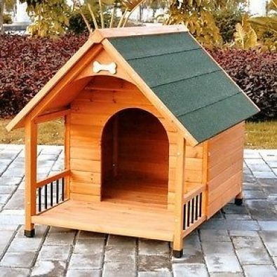 Woof kennels durban phoenix dogs and puppies for Building a dog kennel business