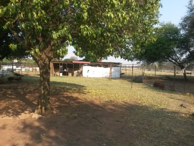 smallholding for sale now house cottage outbuildih