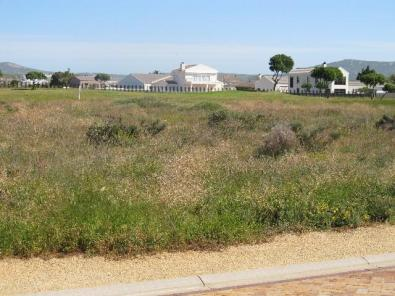 VACANT LAND FOR SALE IN LANGEBAAN COUNTRY ESTATE