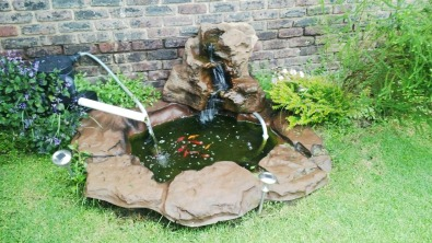 Koi pond boksburg fish and aquariums junk mail for Koi ponds durban