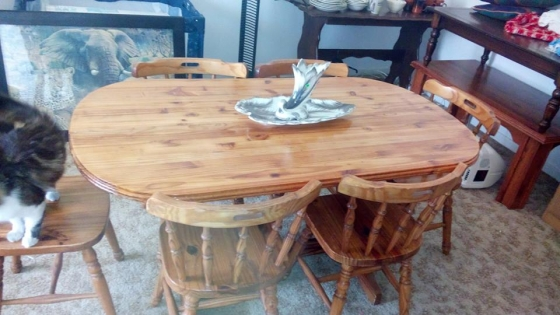 oregan pine dining table with 6 chairs paarl diningroom furniture
