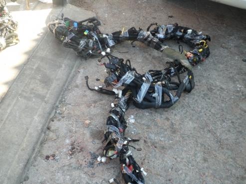 alfa romeo selespeed wiring harness for contact  alfa romeo 147 selespeed wiring harness for contact 076 427 8509 whatsapp 076 427 8509