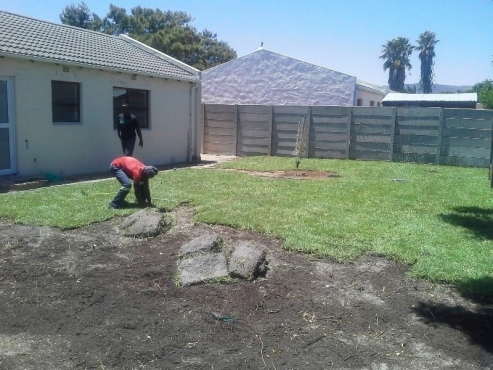 Grassfarm instant lawn and topsoil pretoria east for Lawn topsoil