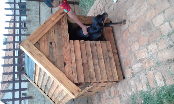Large Dog Kennel For Sale Cape Town