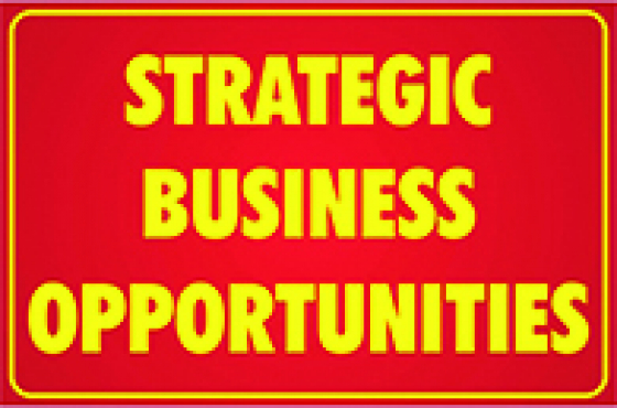 Strategic BUSINESS OPPORTUNITIES