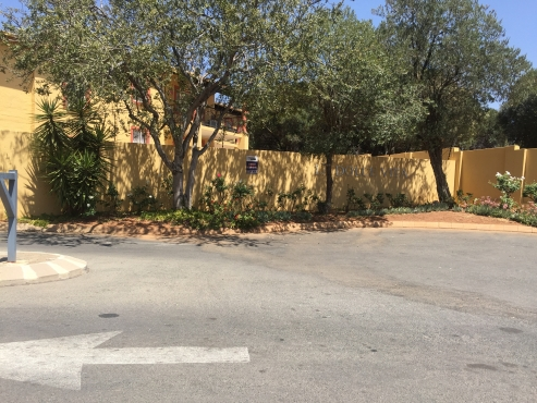 2 Beds 1 Bath Downstairs In Sundowner Near Northgate Mall