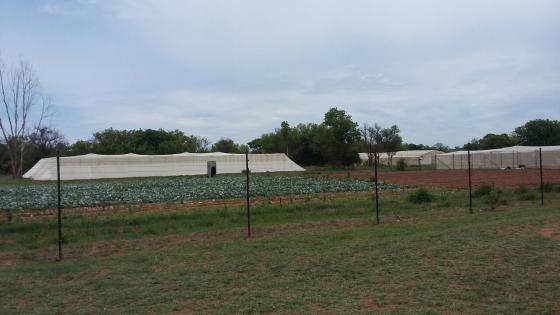 57 H Farm For Sale