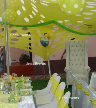 Wedding decor baby shower parties functions catering for Baby shower function decoration