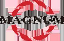 Retroquad Magnum Power