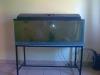 500L Cold Water Aquarium