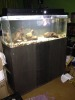 3foot fish tank with stand