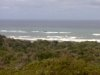 Seaview stand at Birah, Eastern Cape