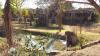 Garden bachalors flat