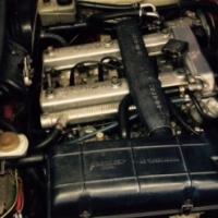 1983 Alfa GTV 2.0 in fantastic shape