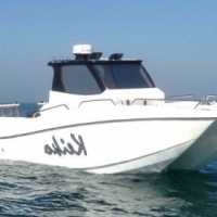 GS 28 Walkaround Catamaran