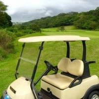 Golf Cart Club Cart 48v President