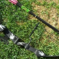 Compound Bow with 8 new arrows.