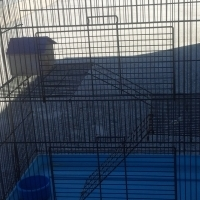 three story cage for rats