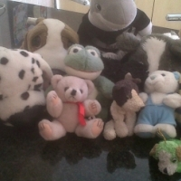 Soft toys looking for a new home