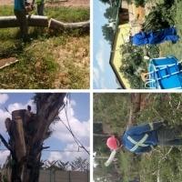 Tree felling in Vaal, 0164211368, tree cutting in Alberton, 0782170278