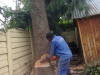 Weltevreden Park Tree Removal and Site Clearings 0734421108
