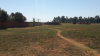 Prime position 8 hectare plot for sale in Tarlton