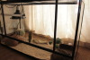 Glass Terrarium For Sale