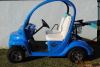 Custom Golf Cart and Charger