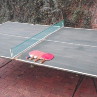 Table tennis table and accessories