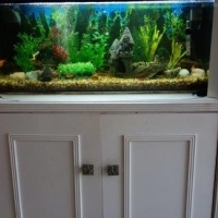 FULLY EQUIPED TROPICAL FRESH WATER AQUARIUM WITH CUPBOARD