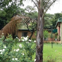 Plot with two house on to rent in Strydfontein (Hornsnek)