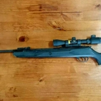 Gamo Pellet Gun For Sale