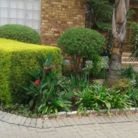 Ridgewood Townhouse for Sale (Newcastle)