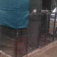 Ringnecked parakeets (ringneke) + bird cage
