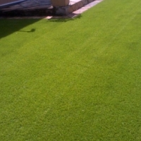 Artificial Grass, New Products at the best prices
