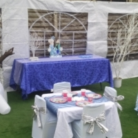 FROZEN THEME PARTY PACKAGE FOR 20 KIDS.