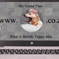 ONE STOP Website design / Hosting / Admin