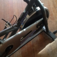 Johnson hi tech gym exercise bike
