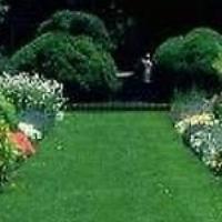LM & KIKUYU GRASS SUPPLY AND LAYING.