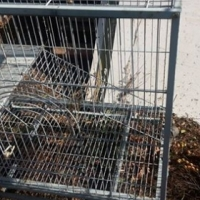 2 cages for sale big rabbit cage