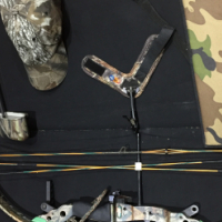 Junior left handed compound bow (Bear Odyssey 2)