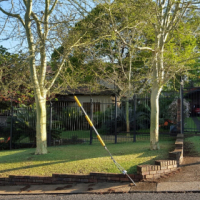 Lovely quiet and secure cottage in popular suburb and in walking distance of popular shopping centre