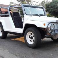 Jeep / Badger Beach Buggy