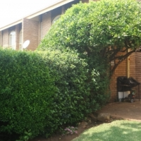 Neat Secure Two Bedroom Townhouse To Rent Parkrand Boksburg