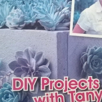 The Gardener. Die Tuinier. D.I.Y Projects with Tanya. 12 Outdoor D.I.Y projects. Step-by-step.
