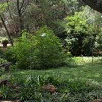 Midrand Garden Cottage - 2 Bedroom - R 5000