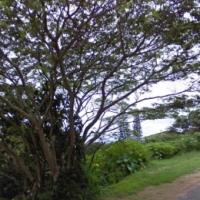 Vacant Land for Sale – Seaview Stand Hibberdene Lower South Coast
