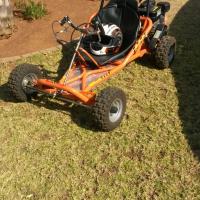 go cart 150cc
